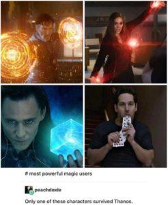Thanos got Dr Strange, Scarlet Witch and Loki. Not Ant-Man
