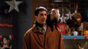 Marcel came into Ross' life in the first Friends Christmas episode