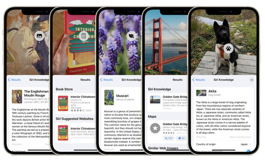 Visual Look Up in iOS 15 allows you to learn more about the world around you with on-device intelligence.